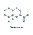 valencene sesquiterpene aroma vector image vector image