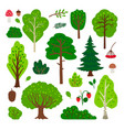 cartoon forest tree set vector image vector image