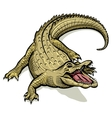 Cartoon green crocodile vector image