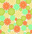Citrus Seamless vector image vector image