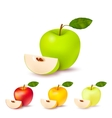 Colorful Apples Isolated Set vector image vector image