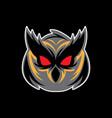 head owl logo vector image vector image