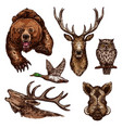 sketch icons of wild animals birds vector image vector image