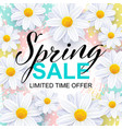 spring sale banner design template vector image vector image