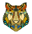 Tiger head sketch vector image vector image
