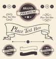 vintage design elements badges and emblems set vector image vector image