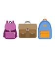 set of school bags vector image