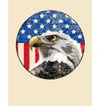 bald eagle American flag vector image vector image
