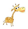 cute funny giraffe vector image