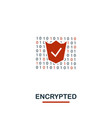 encrypted icon creative two colors design from vector image vector image