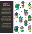 house plants indoor plants and flowers in pots vector image vector image