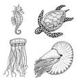 sea creature cheloniidae or green turtle vector image