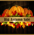 autumn special sale poster on wood background vector image vector image