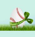Baseball Easter egg vector image