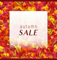 fashion autumn sale poster vector image vector image