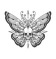 hand drawn skull butterfly tattoo vector image vector image