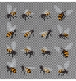 Honey bee set on a transparent background vector image vector image