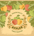 apples label vector image vector image