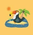cute toucan on surfboard cartoon animal baand vector image