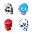 different style skulls faces vector image vector image