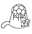 fat cat is caught a soccer ball isolated vector image vector image