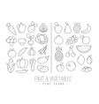 Flat Fruits Vegetables Icons vector image