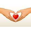 hands shaped heart vector image vector image