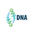 sign in the shape of a spiral dna vector image vector image
