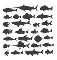 fishes silhouettes set vector image