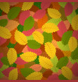 background with autumn leaves vector image vector image