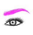 beautiful hand drawing eyebrows for the logo of vector image vector image