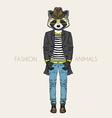 fashion raccoon vector image vector image