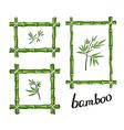 Green bamboo frames vector image