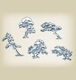 japanese pine set design elements vector image