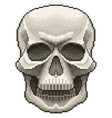 pixel human skull isolated vector image vector image