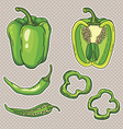 set with vegetables peppers isolated vector image