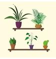 houseplants on shelf in flat design vector image