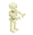 Isometric 3d Sceleton Halloween Monster Icon Flat vector image