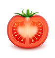 big ripe red fresh cut tomato isolated vector image vector image