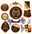 collection of decorative badges and labels with vector image vector image