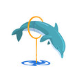 dolphin jumping through a ring sea animal vector image vector image
