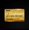 gold credit card isolated on black vector image vector image