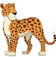 Good leopard vector image