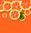 grapefruit background sliced grapefruits pieces vector image vector image
