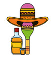 maraca with mexican hat and tequila bottle vector image vector image