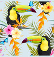 toucans and flowers vector image vector image