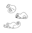 Cartoon cute chameleons set vector image