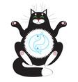 Cat meditating vector image