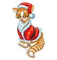 Cat Santa Claus Christmas vector image