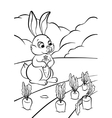 little hare with carrot vector image vector image